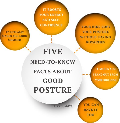 posture-facts